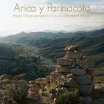 Arica y Parinacota, Paisaje Cultural de América