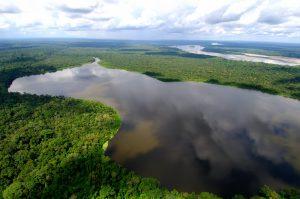 Amazonia_ecuador